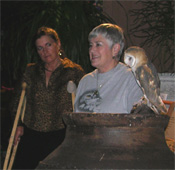 Flash, a rescued owl from Wild At Heart at Kevin's show in October 2005