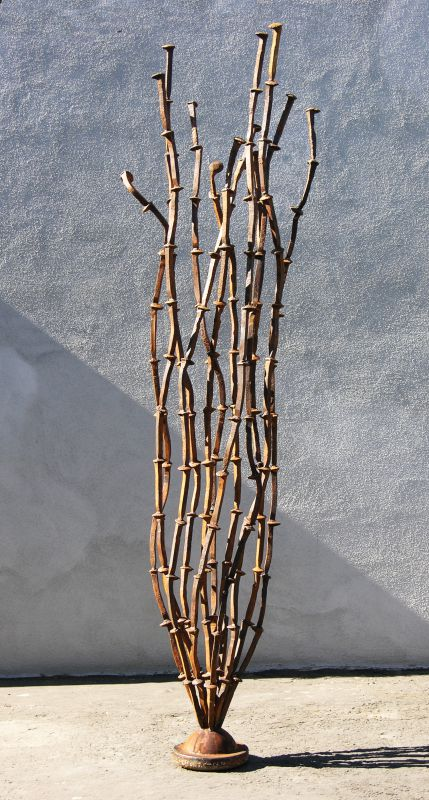 Desert Anemone