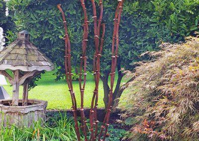 Railroad spike Ocotillo in a lush garden - Kevin Caron