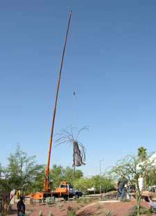 Installing Kevin Caron's public art commission for the city of Avondale, Arizona