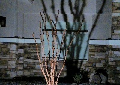 Ocotillos, a steel railroad spike garden sculpture by Kevin Caron.