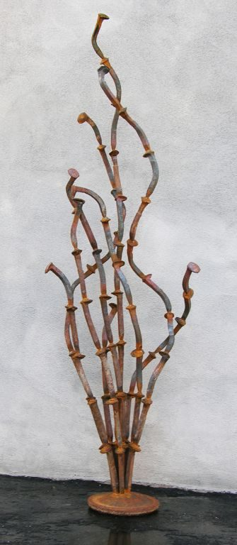 Oscillating Ocotillo